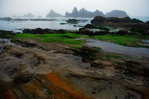 Beaches Seal Rock Oregon